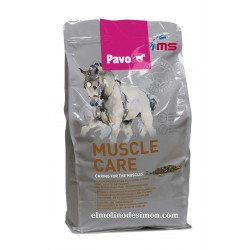 PAVO MUSCLE CARE 3 KGR